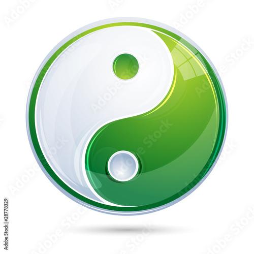 Fényképezés  yin yang