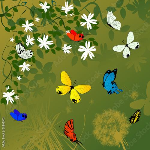 Tuinposter Vlinders Spring time background
