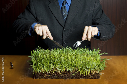 Photo Man holding a fork and knife cutting into a plate of grass