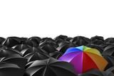 L'arcobaleno - 28834908
