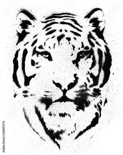 tygrys-matrycowy-wektor