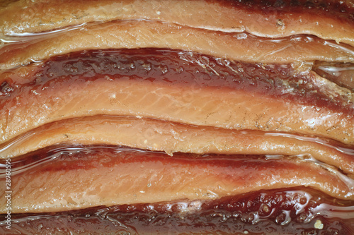 Close view of anchovies Canvas Print