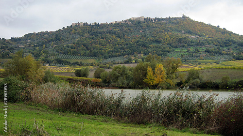 Photo  Montalcino in Val d'Orcia (Siena)