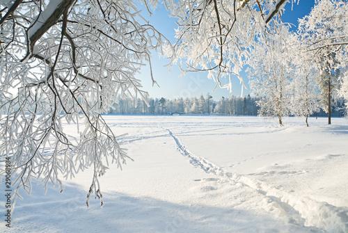 Aluminium Prints Dark grey winter landscape