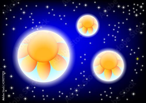 Foto op Canvas Kosmos Cosmos with orange flowers