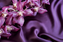 Beautiful Trendy Violet Silk