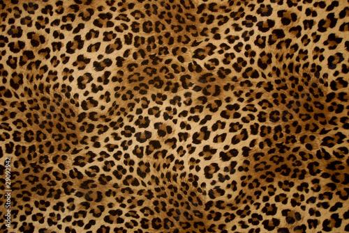 In de dag Luipaard tessuto maculato di cashmere