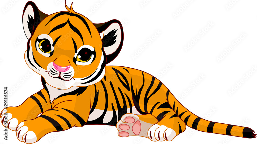 Fototapeta Little tiger cub resting