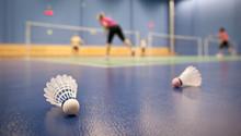 Badminton - Badminton Courts W...