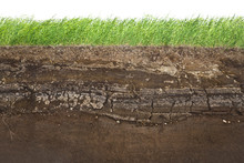 Grass And Soil Layers Isolated...