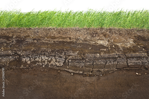 Fotografía  Grass and soil layers isolated on white