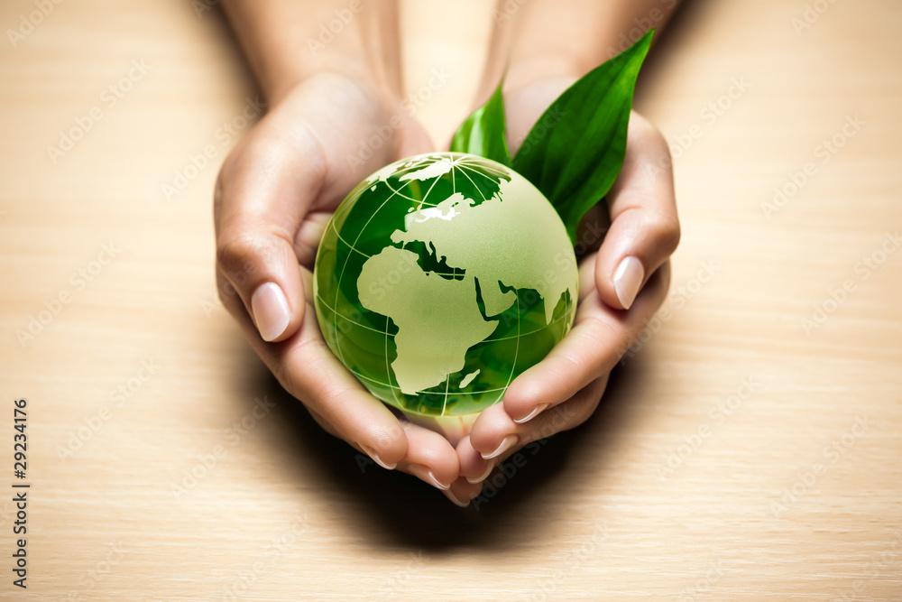 Fototapeta écologie planète terre main