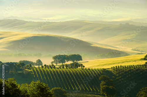 Fotografia  Toskana Huegel  - Tuscany hills 38