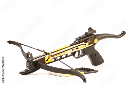 Canvas Print crossbow
