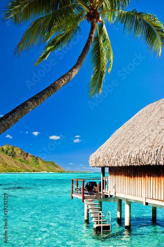 bungallow-i-palma-z-krokami-do-niesamowitej-laguny
