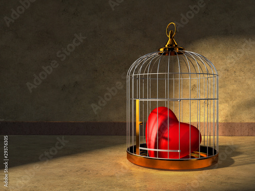 Canvas-taulu Heart in a cage