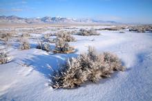 The Great Basin Desert In Nevada In Winter.