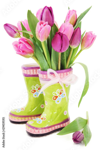 Plakat Wiosna tulipan kwitnie w butach