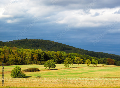 Poster Miel Autumn sunny landscape in windy weather