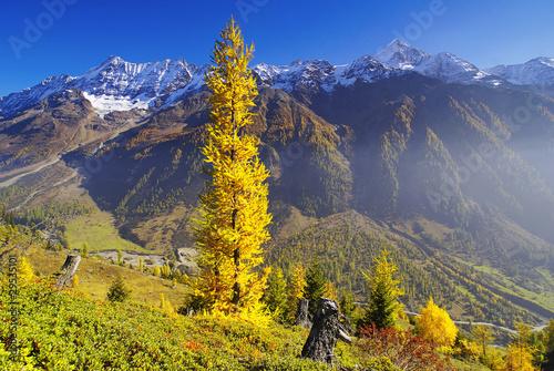lotschental-valais-szwajcaria-europa