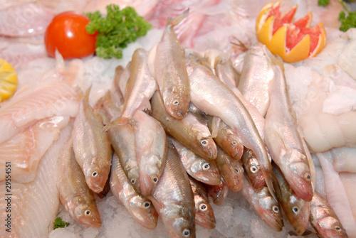 Fotografia, Obraz  Food10_0058