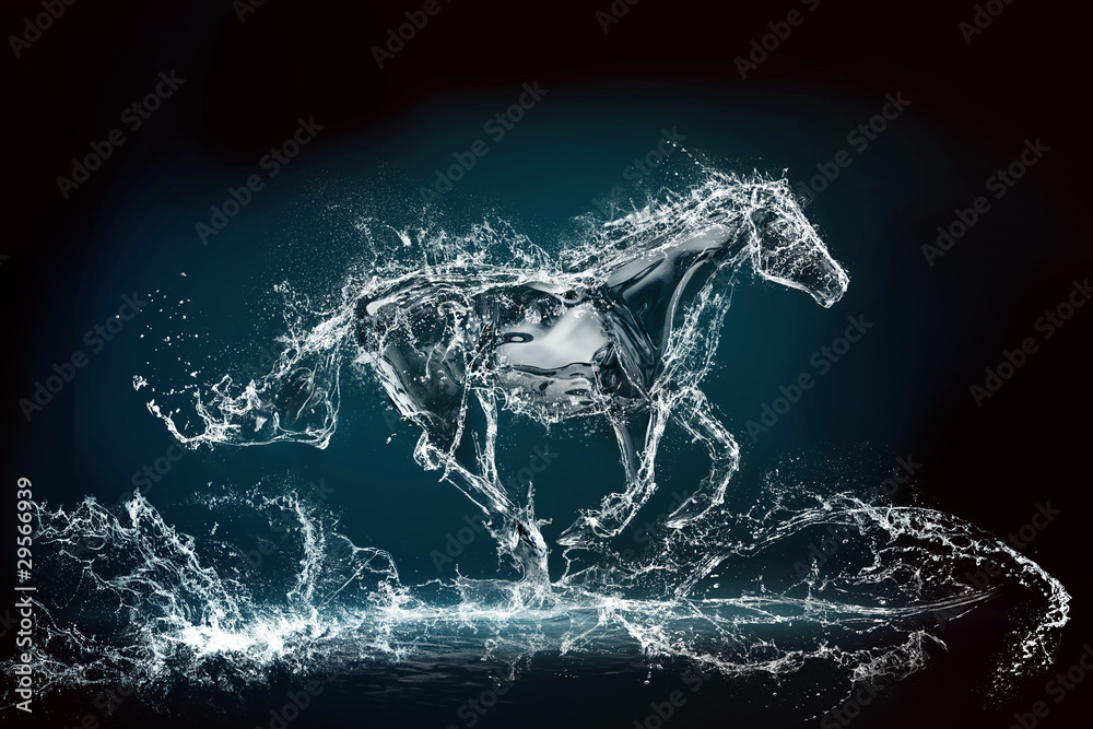 Fototapeta water horse 3