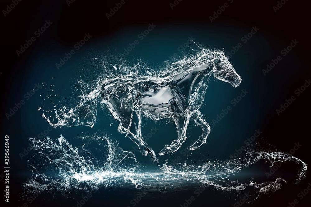 Fototapeta water horse 2