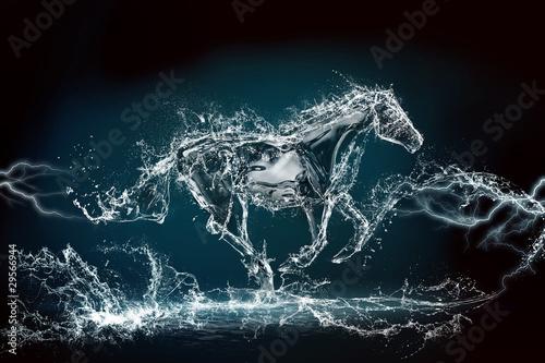 horse water storm - fototapety na wymiar