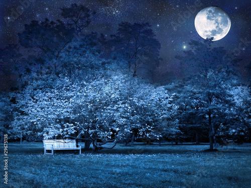Foto op Aluminium Nachtblauw Full moon night in park