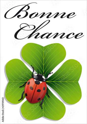 Poster  Coccinelle_Chance