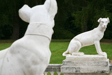 Dog Statues In Antique Roman