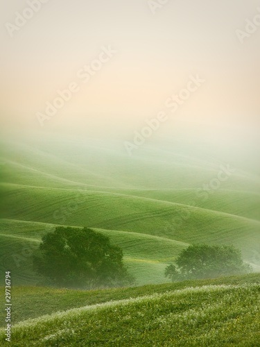 Wall Murals Pistachio Hilly landscape of Tuscany