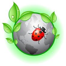 Abstract Eco Circle, Ecology Concept