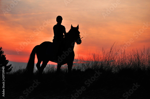 La pose en embrasure Equitation A Rider Silhouette on Horseback by sunset