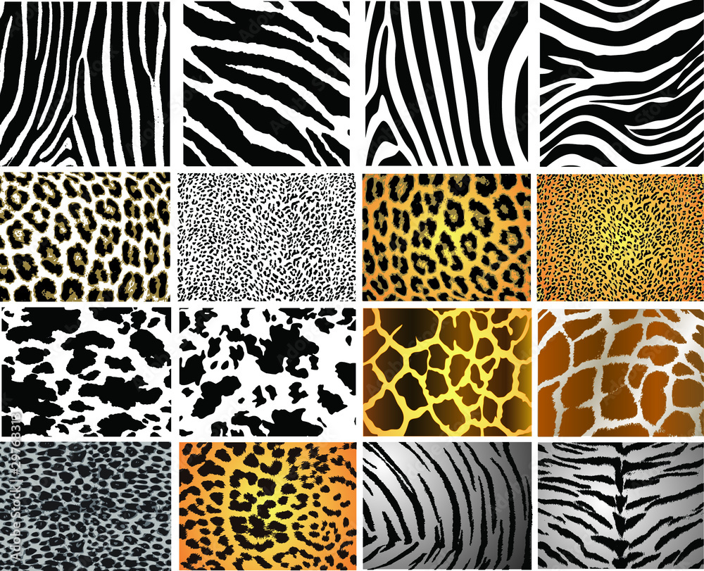 Fototapety, obrazy: Collection of 16 vector skin animal texture
