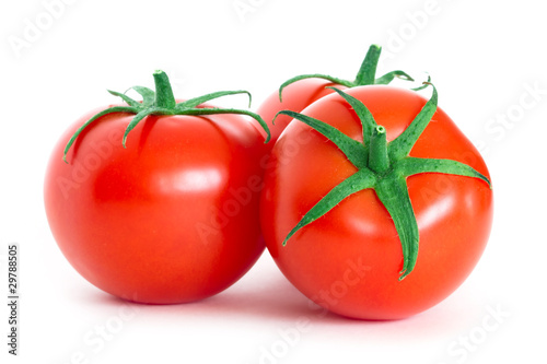 Fotografie, Obraz  tomatoes on white background