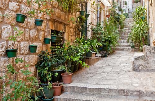 Fototapeten Schmale Gasse Narrow street with greenery in flower pots on the floor