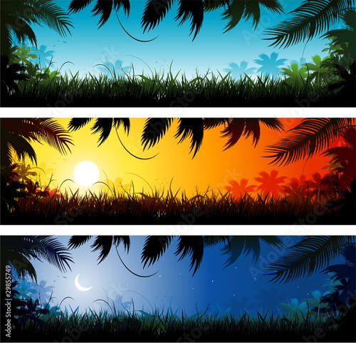 Fotografie, Obraz  Jungle banner