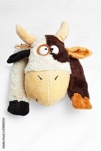 Fotobehang Boerderij Part of funny soft toy cow on white with selective focus
