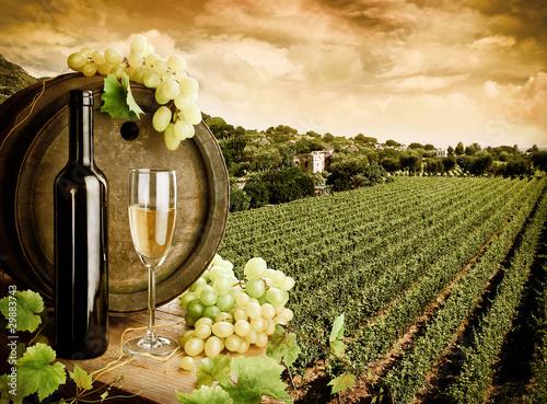 Papiers peints Vignoble Wine and vineyard in vintage style