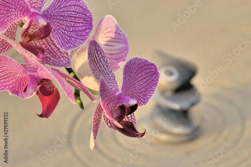Photo sur Plexiglas Zen pierres a sable Zen et harmonie