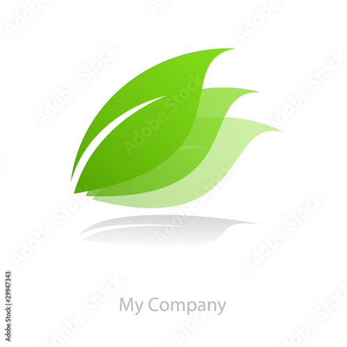 Valokuva  Logo leaf movement in # Vector