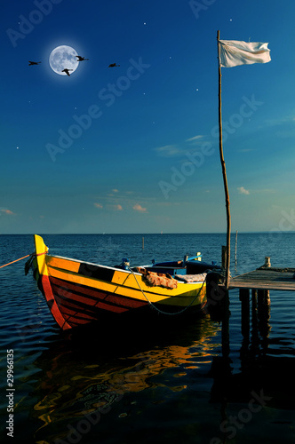 Poster Volle maan Boat in moonlight