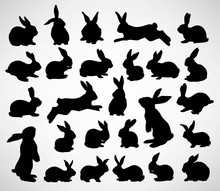 Big Collection Of Rabbit Silho...