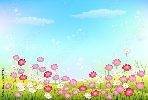 Printed kitchen splashbacks Light blue Paysage prairie et fleurs