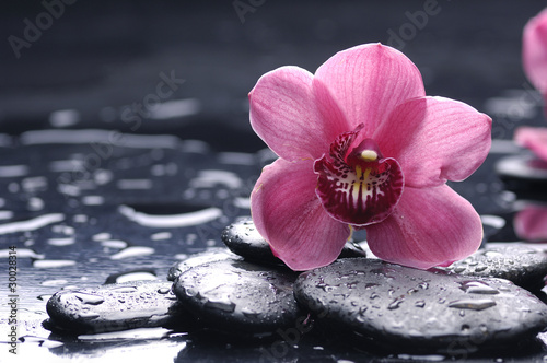 Foto auf Gartenposter Spa still life with pebble and macro of orchid with water drops