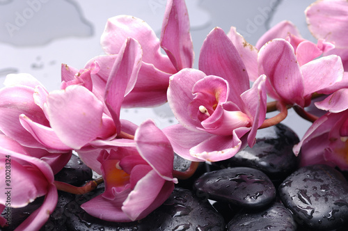 Keuken foto achterwand Spa Set of cattleya orchid flower and stone with water drops