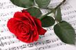 Symphony of love 2