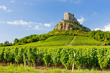 Solutre Rock With Vineyards, B...
