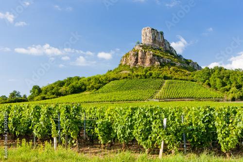 Photo sur Aluminium Vignoble Solutre Rock with vineyards, Burgundy, France